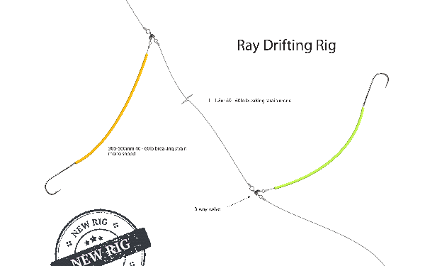 Drifting rig for rays