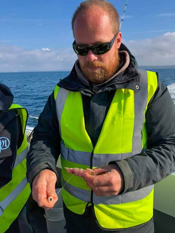 Martin Hubert preparing baits on the second day