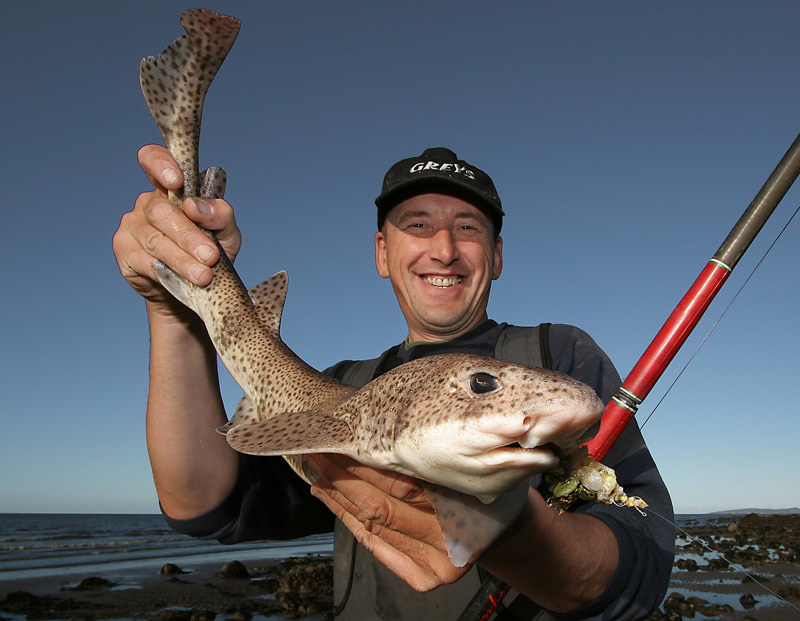 an angler with a head shot of a lesser spotted dogfish