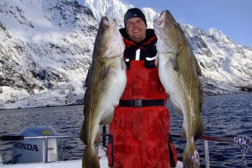 twp fjord cod from the Lofoten Islands