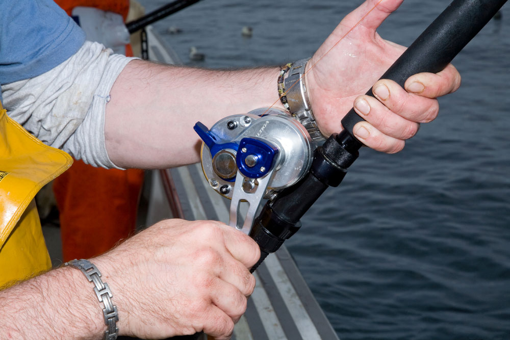 35702d64327 Pictures by Steve Souter. Daiwa Saltiga 2 Speed Lever Drag Reel ...