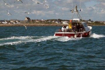 boat fishing kilmore reef under way