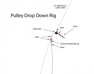 pulley drop down rig