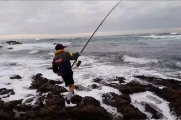Daniel hooked into a gully shark