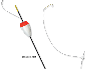 long stem distance float