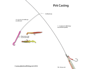 the pirk casting rig