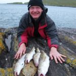 An Irish Angler's Year codling