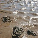lugworm casts in the sand