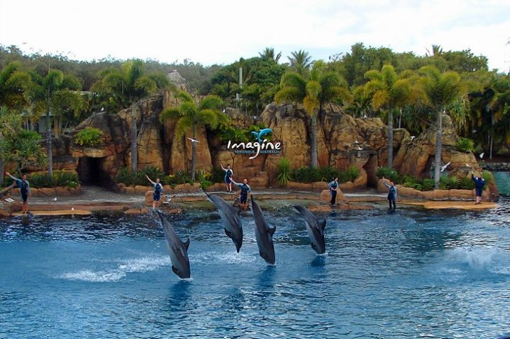 Sea world map gold coast path decorations pictures full path and nigeria gold coast map sea world gold coast ryogo sea world gold coast movie world wet n wild and sea world day mega pass wet n wild gold coast gumiabroncs Gallery