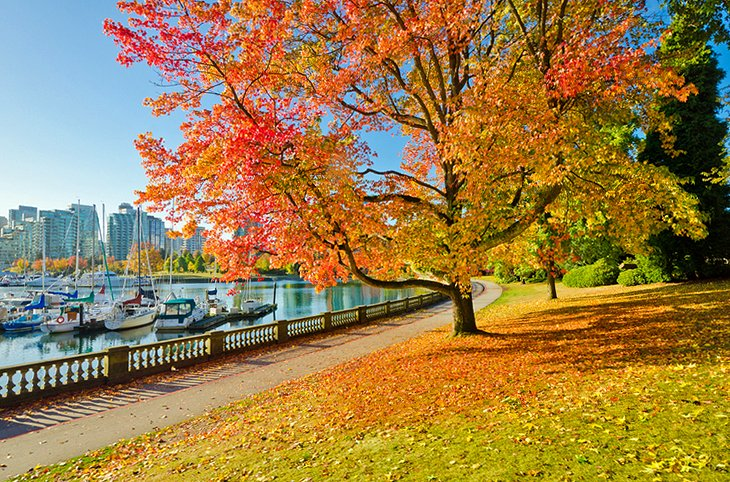 Vancouver's Stanley Park, Vancouver's Stanley Park canada, stanley park