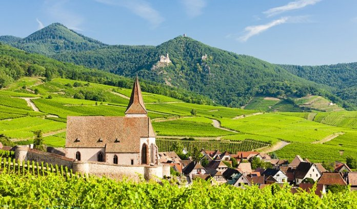 The Alsace Region