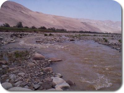Lluta River