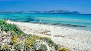 Playa del Muro Mallorca