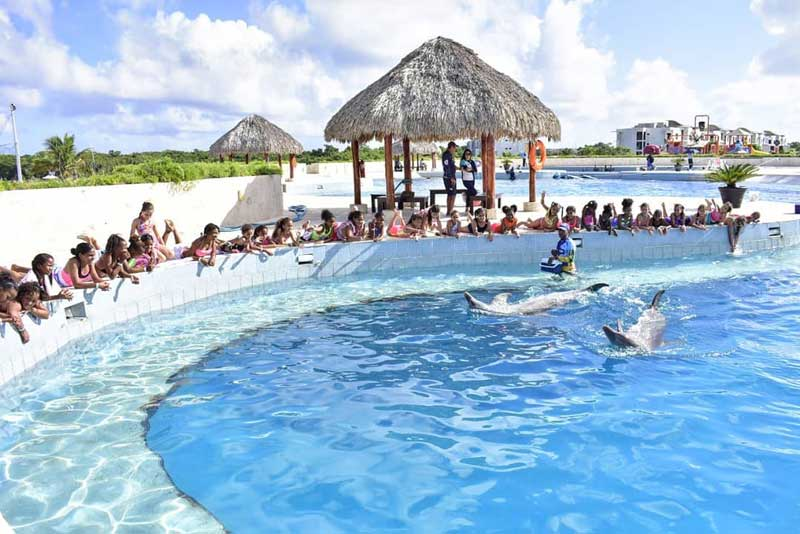Habitat Dolphin Discovery Punta Cana