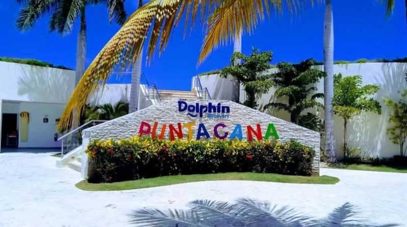 Nada con delfines Punta Cana