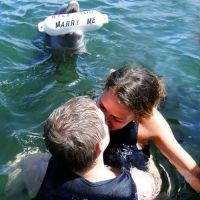 dolphin proposal