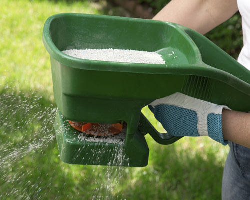 how to fertilize a lawn