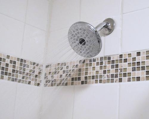 descaled showerhead