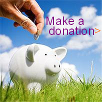 button with a piggy bank saying make a donation