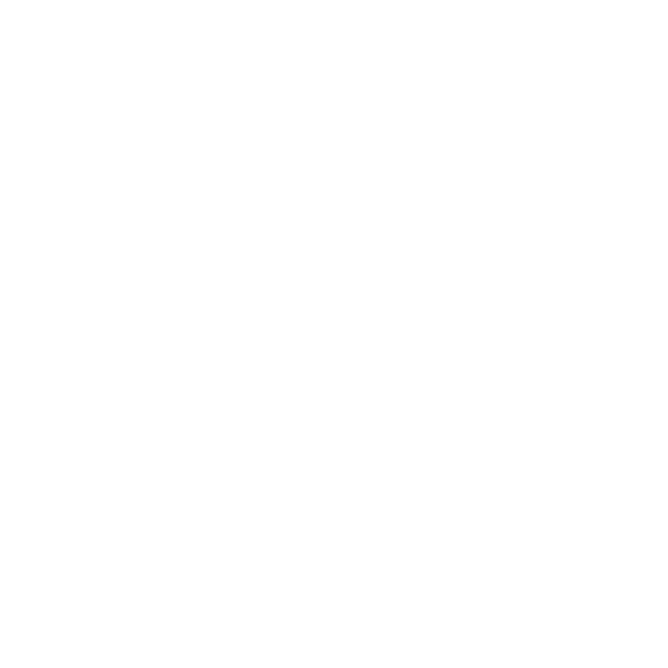 Bike Ped icon