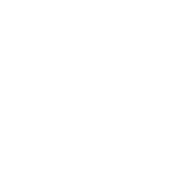 Personal Transport icon