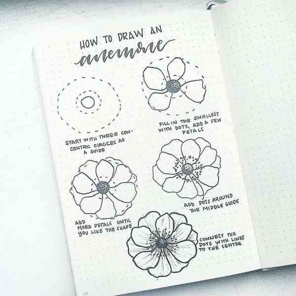 How to draw an anemone flower doodle.