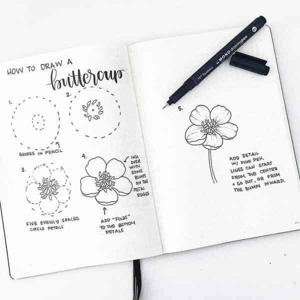 How to draw a buttercup.