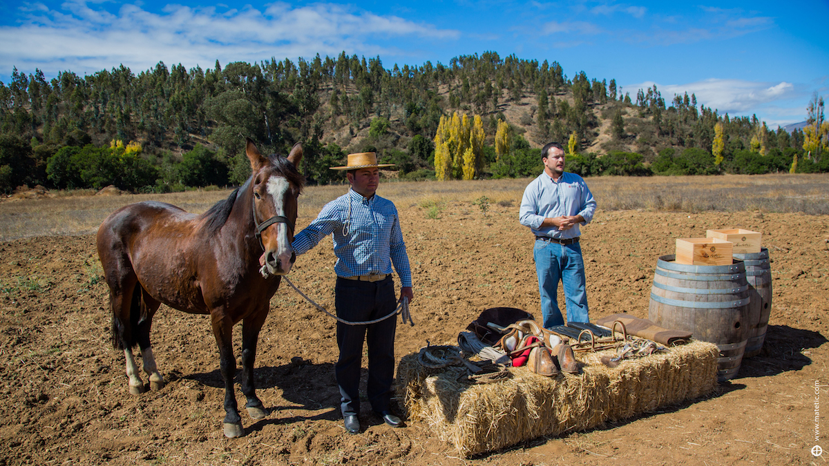 Horse Riding at Matetic, Chile