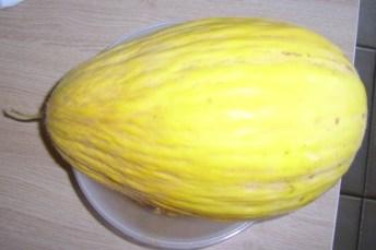 Direct consumeren hoeft niet. Op 20 september was de meloen geoogst op 29 augustus nog perfect lekker. Ondanks het verdroogde steeltje.