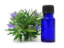 Aceite y Flor de la Lavanda: beneficios y usos en medicina natural