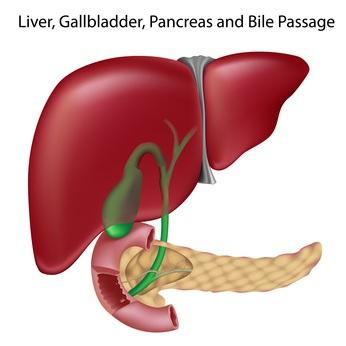 hierbas medicinales para el hígado