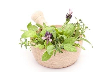 La Fitoterapia: Curarse con Plantas