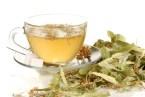 10 Plantas medicinales e Infusiones para la Gastritis y Colitis