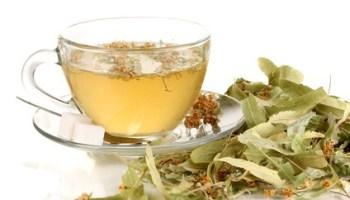 diferencias entre infusiones y té