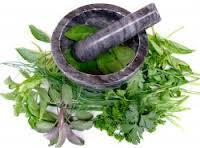 """Fitoterápia """"Uso de Plantas Medicinales"""""""