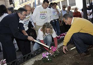 Esculturas de flores y plantas en Alicante