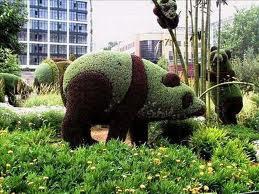 Escultura en plantas