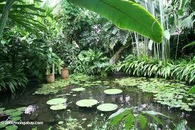 Jardín Botánico de Bogotá