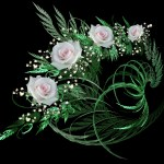 Wallpapers de rosas 3