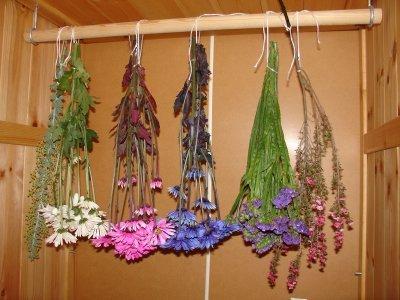 Formas de secar flores
