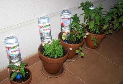 Riego de plantas cuando no estamos