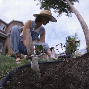 Consejos para tu salud al trabajar en el jardín