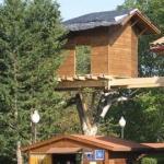 Casas en los árboles 2