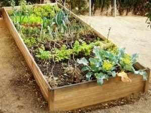 Tu jardín por menos
