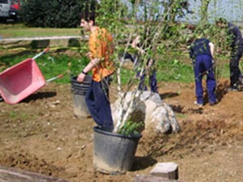 Técnico en Jardinería y Floristería