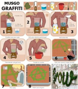 Haz graffitis con musgo 1