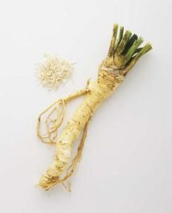 Rábano picante - (Armoracia rusticana)