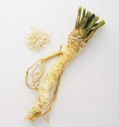 Rábano picante – (Armoracia rusticana)