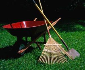 Plantando el césped