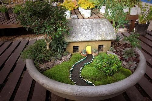 Construye un jardín en miniatura